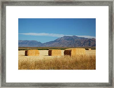 Idaho, Butte County, Hay Bales Framed Print by Jamie and Judy Wild