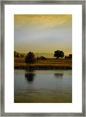 Idaho Tree Reflections  Framed Print by Mary Gaines