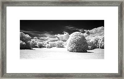 If  1 Framed Print by Alan Russo