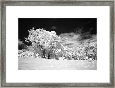 If 3 Framed Print by Alan Russo