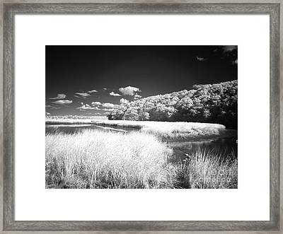 If 4 Framed Print by Alan Russo