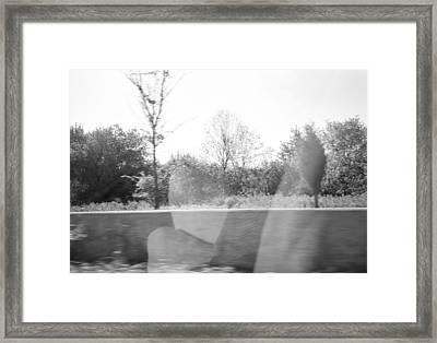 If I Fell Framed Print by Lisa Stout