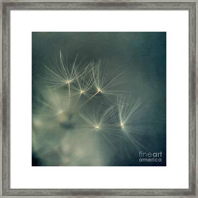 If I Had One Wish Framed Print by Priska Wettstein