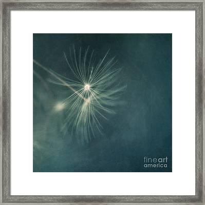 If I Had One Wish II Framed Print by Priska Wettstein