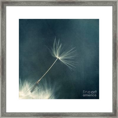 If I Had One Wish IIi Framed Print by Priska Wettstein