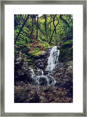 If I Keep Falling Framed Print by Laurie Search