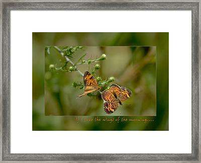 If I Take The Wings Of The Morning Framed Print by Denise Beverly