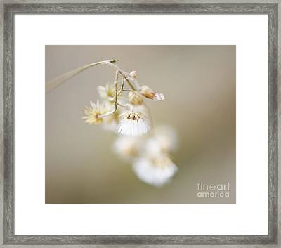 If Only I Am ..... Framed Print