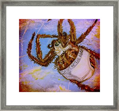 If Orb Weavers Wore Underwear Framed Print