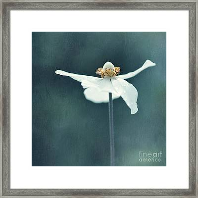 If  Petals Were Wings Framed Print
