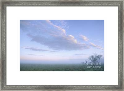 If There Is A Heaven... Framed Print