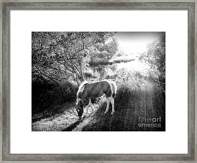 If There's A Heaven... Framed Print