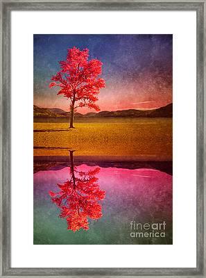 If You Believe In Me - I Will Believe In You Framed Print by Tara Turner