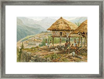 Igorrote Farm In Luzon, Philippines, From The History Of Mankind, Vol.1, By Prof. Friedrich Ratzel Framed Print by Hans Meyer