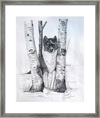 Ihasa In The Woods Framed Print by Joette Snyder