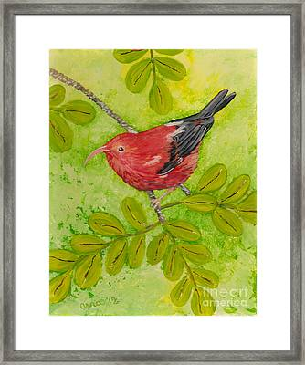 Framed Print featuring the painting 'i'iwi by Anna Skaradzinska