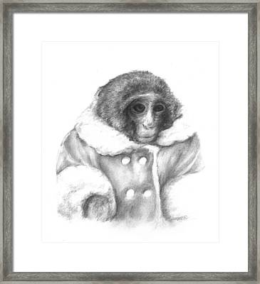 Ikea Monkey  Framed Print