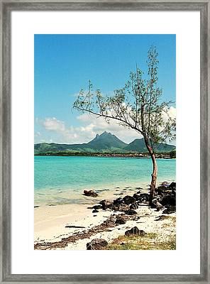 Ile Aux Cerfs Mauritius Framed Print by David Gardener