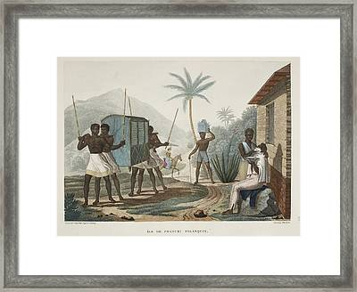 Ile De France Palanquin Framed Print by British Library