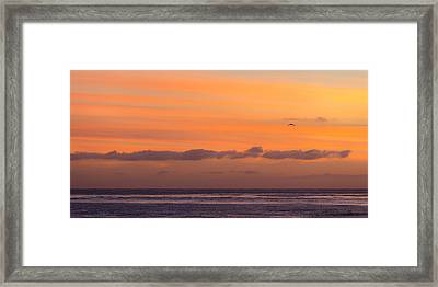 I'll Fly Away Framed Print by Peter Tellone