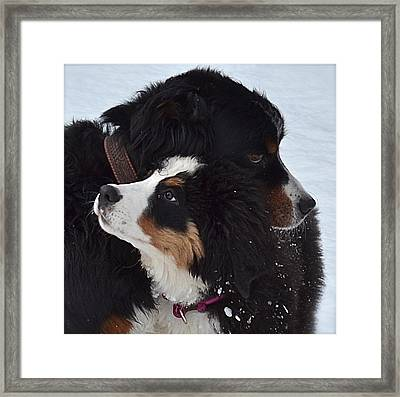 I'll Keep You Warm Framed Print