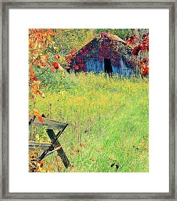 Illinois Backroads Framed Print by Virginia Folkman
