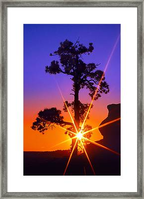 Illuminated Needles  Framed Print