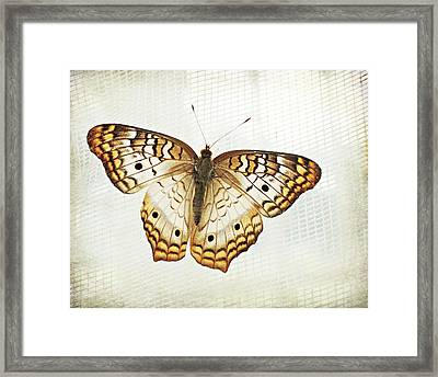 Illuminated Wings Framed Print