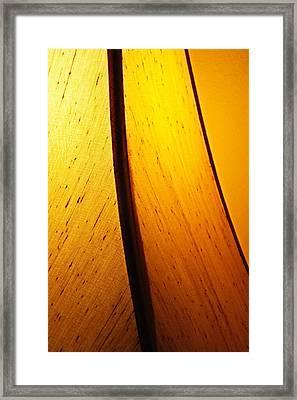 Illumination Framed Print by Debi Dmytryshyn