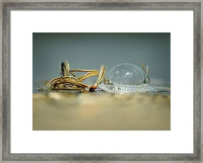 Illusion And Reality Framed Print