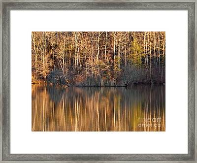 Illusion Framed Print by Christy Ricafrente