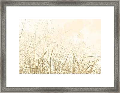 Soldiers Of Summer Framed Print