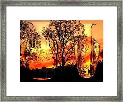 Framed Print featuring the photograph Illusion by Joyce Dickens