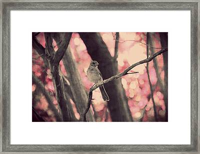 Illusion Of Spring Framed Print by Marianna Mills