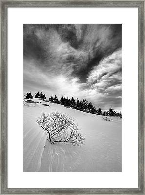 Framed Print featuring the photograph Illusion by Patrick Downey