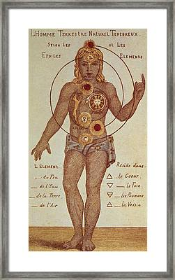 Illustration From Theosophica Practica, Showing The Seven Chakras, 19th Century Framed Print by Indian School