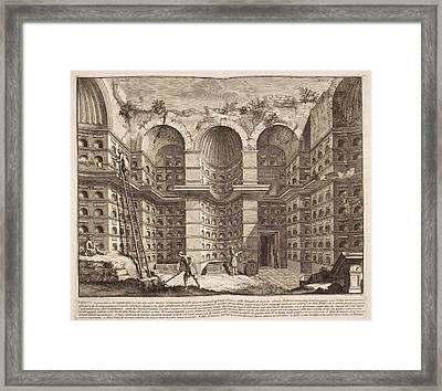 Illustration Of Aviary For Book On Ancien Framed Print by British Library