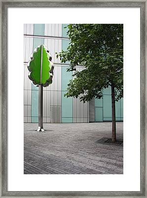 I'm A Tree Framed Print by Stephen Norris