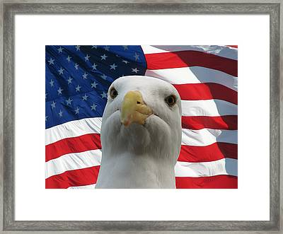 I'm An Eagle Dammit Framed Print by Darin Volpe
