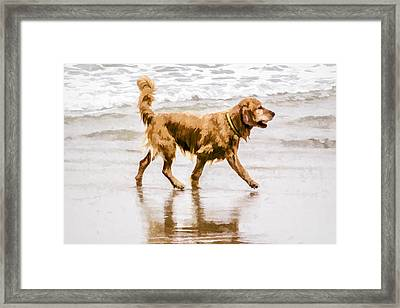 I'm Back Framed Print by Photographic Art by Russel Ray Photos