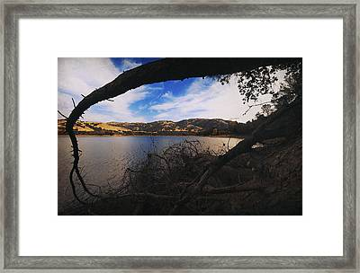 I'm Here If You Fall Framed Print by Laurie Search