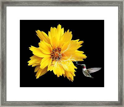 Im Hungry Framed Print