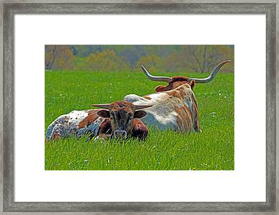 I'm Just A Baby Framed Print by Lynn Sprowl