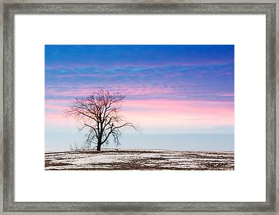 I'm Just A Tree Framed Print