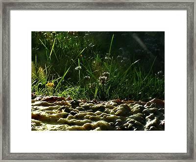 Im  Framed Print