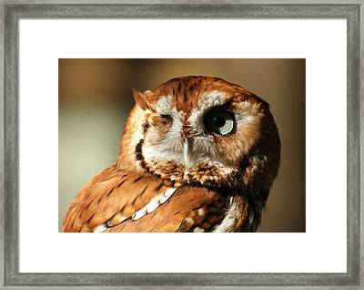 Framed Print featuring the photograph I'm Not Winking by B Wayne Mullins