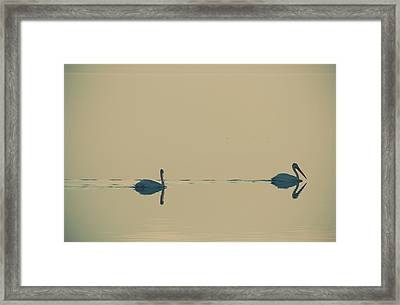 I'm Sailing Right Behind Framed Print by Laurie Search