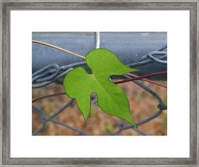 I'm Single Framed Print by Sherry Gombert