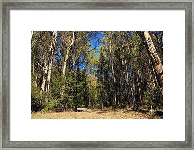 I'm So Small Framed Print by Laurie Search
