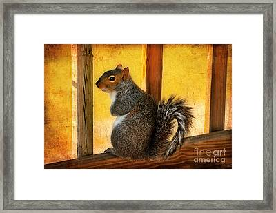 I'm Sorry Framed Print by Lois Bryan